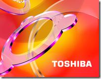 Toshiba расширяет сеть авторизованных сервисных центров
