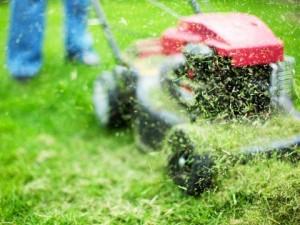 Эффективные советы по уходу за бытовыми газонокосилками