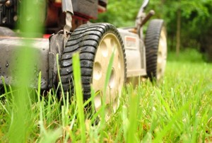Как обслуживать газонокосилку, чтобы продлить ее безотказную работу
