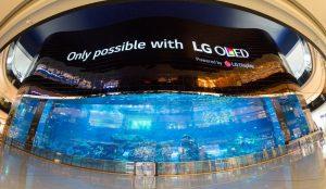 LG представила самый большой OLED экран в мире