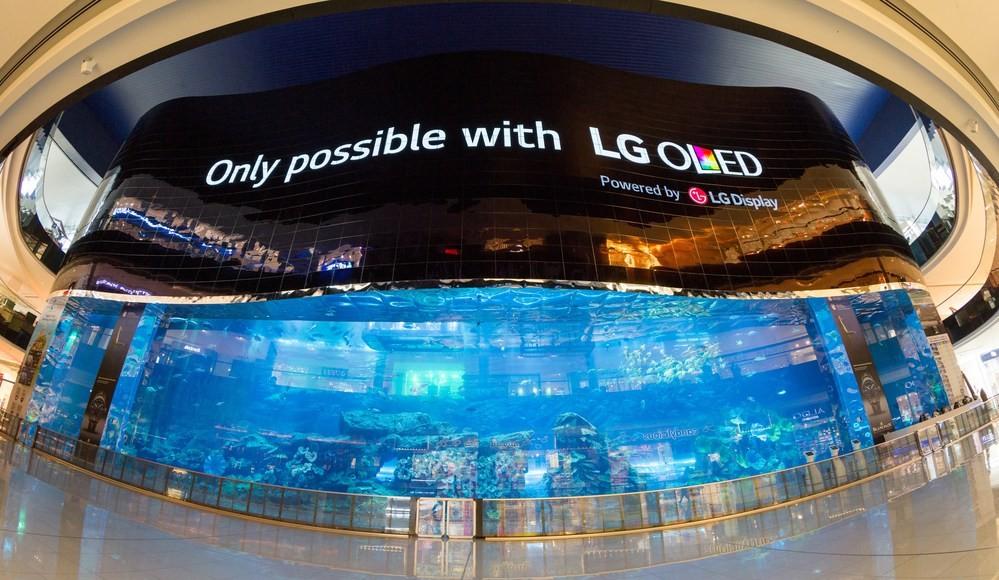 Экран LG OLED в Дубаи